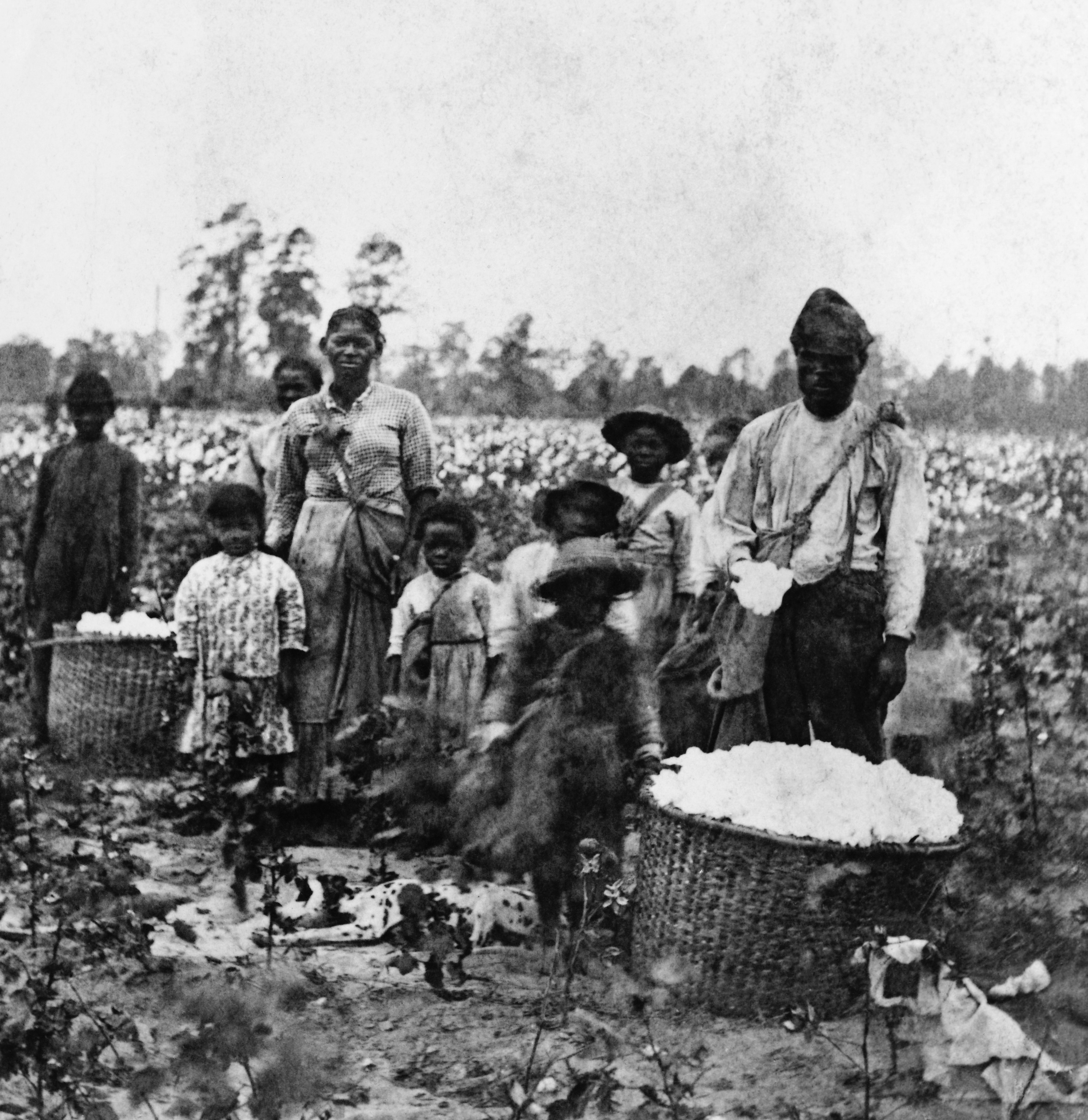 slavery was the dominating reality of all southern life 1820 1860 Slavery was the dominating reality in southern life assess the validity of this generalization for two of the following aspects of southern life from about 1840-1860: political, social, economic, and intellectual life.